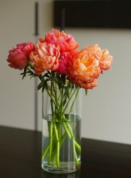 開花して2〜3日目位、どんどん色が薄くなっていきます