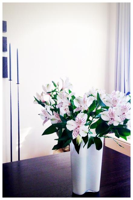 先週買ったお花はまだまだパリッとしています。